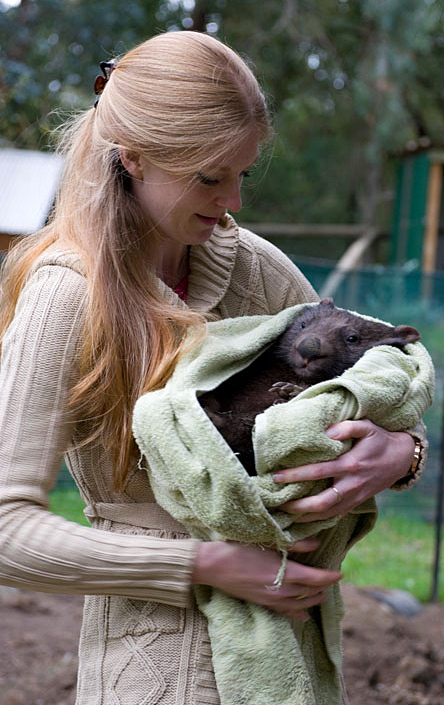 Wildlife rescuer, Georgina Beach with fire victim, Dudley the wombat.